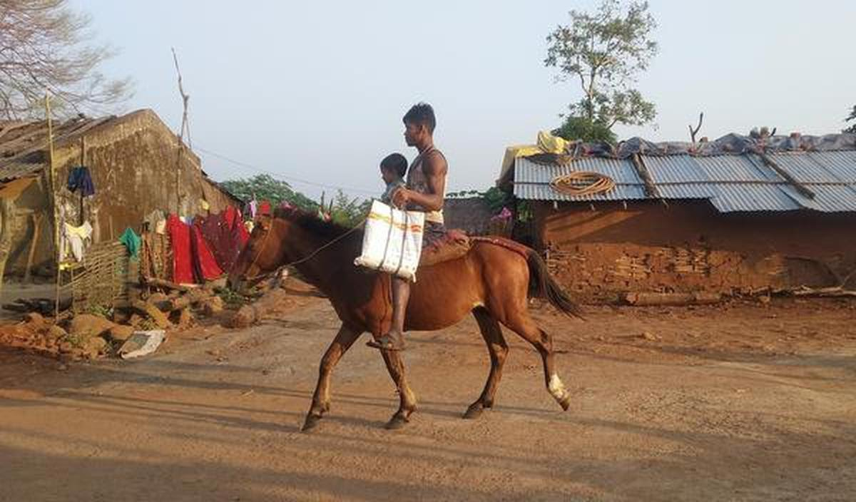 Until recently horses were a common mode of transport in Swabhiman Anchal